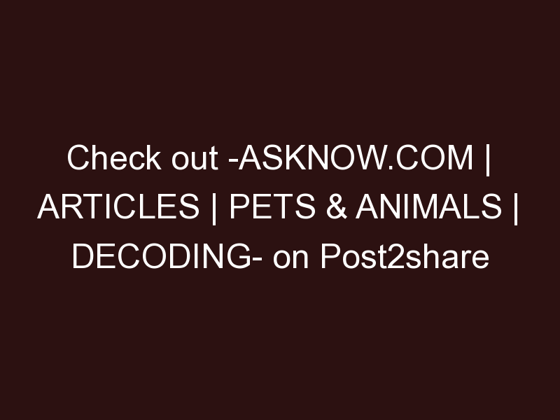 AskNow.com | Articles | Pets & Animals | Decoding Your Pets Dreams